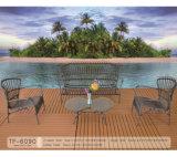 مبتكر تصميم [ويكر] حديقة خارجيّ أثاث لازم [رتّن] كرسي تثبيت أريكة مجموعة