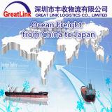 Transporte do oceano de China a Hiroshima, Japão (JPHMA)