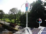 Vertical Axis generador de energía eólica con el certificado del CE