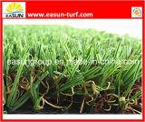 Het Gras van het Tapijt van de tuin (N4SD1540)