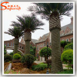 Hot Sale Outdoor Large Artificial Date Palm Trees