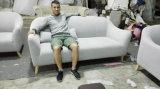 El sofá seccional de la tela de dos asientos fijó con las piernas de madera (FS-007)