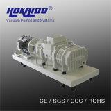 Hokaido 건조한 나사 나선형 회전자는 밀어준다 진공 펌프 (RDE300)를