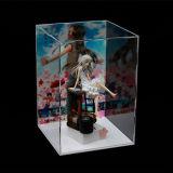 Pop AcrylDoos van de Vertoning, Tribune van de Vertoning van het Stuk speelgoed de Acryl