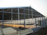 Stahlkonstruktion verschüttet mit Geflügel-Geräten
