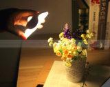 Lámpara de la inducción del dormitorio de la iluminación de la luz LED de la pared del sensor de movimiento de la noche del trébol