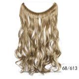 Moderne lose verworrene lockiges Haar-einschlaghaar-Extension