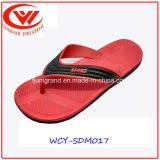 Flops Flip ЕВА ботинок сандалий пляжа людей