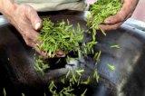 Handgemachter grüner Tee mit gutem Preis