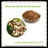 Extracto natural de Hoveniae del semen de la alta calidad
