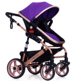 2 in 1 Form-preiswertem Baby-Spaziergänger scherzt Spaziergänger