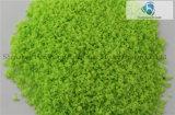 Emulsion Tree Powder für Landscaping
