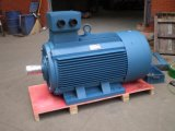 Cer (Frame Y2 56-315)のIe1 Three Phase Induction Electric Motor