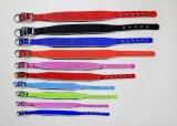 Cp02 LEDの編みこみのウェビングナイロンポリエステル犬のスポーツの馬具の鎖カラー