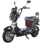 セリウムEEC 1000W 2の車輪の移動性の電気スクーター