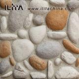 جلمود حجارة اصطناعيّة قرميد [كلدّينغ] قراميد لأنّ بناية ([يلد-40001])