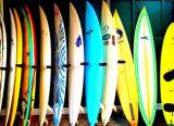 3k упрощают ткань углерода для Surfboard