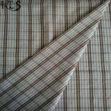 Baumwollpopelin-gesponnenes Garn gefärbtes Gewebe für Kleid-Hemden/Kleid Rls40-40po