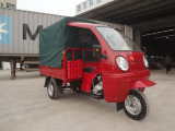 ABS Cabin van Three Wheel Bicycle voor Adults