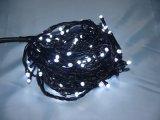 高品質の祝祭IP44 LEDのクリスマス屋外ストリングライト