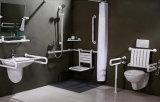 Constructeur de barre d'encavateur sanitaire de toilette d'articles pour Eldery avec la bonne qualité (kt35-37-1)