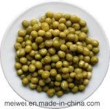 In Büchsen konservierte grüne Erbsen mit preiswertem Preis von China