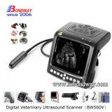 Beweglicher Veterinärdoppler-Ultraschall-Scanner mit Fühler