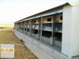 Línea que introduce de la parrilla con el equipo de granja automático en casa prefabricada de la estructura de acero