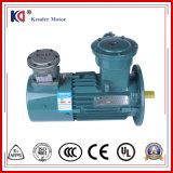 Vitesse de série de Yvbp-80m1-4 Yvbp réglant le moteur électrique avec la conversion de fréquence