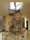 Construção de aço integral moderna do melhor preço das escadas