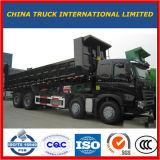 Cargaison lourde de Sinotruk mini inclinant le camion à benne basculante de tombereau de camion à benne basculante