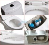 Toilette monopièce fixée au sol de salle de bains de lavage à grande eau en articles sanitaires avec Saso/Ce
