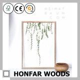 Heet verkoop het Acryl Natuurlijke Houten Frame van het Specimen voor Decoratie