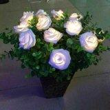 La batteria del LED Rosa illumina gli indicatori luminosi leggiadramente del biglietto di S. Valentino