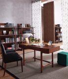 Muebles caseros modernos superventas de la sala de estar (Cx7001)