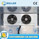 Fabricantes de la cámara fría de China