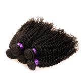 Cabelo humano de Remy, cabelo Curly amável do Virgin