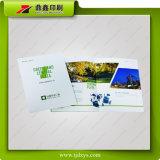 Maitenceの電子製品のインストールマニュアルの印刷Service3