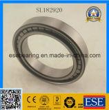 SL печатает полному комплекту цилиндрический подшипник на машинке ролика (SL182920)