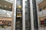 Elevatore facente un giro turistico professionale di osservazione dell'elevatore