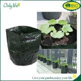 Onlylife flexibles PET Gemüsekartoffel wachsen die Beutel, die Beutel-Garten-Potenziometer-Pflanzer pflanzen