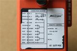 O controle F21-6s do Micromote-Rádio para a grua da alavanca, entrega a grua Chain e a grua do ar