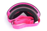Dell'obiettivo occhiali di protezione liberi della neve dei prodotti del pattino di miopia non per le donne
