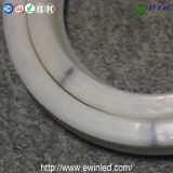 PVC 12V LED Neon Flex Tube Light di 16*24mm con CE e RoHS Certification