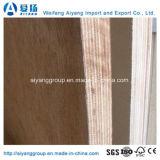 madera contrachapada comercial de 18*1220*2440m m Okoume para los muebles/la decoración