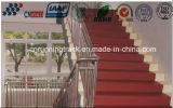 Pavimentazione flessibile del banco di Spua per la superficie dell'aula e del campo da giuoco