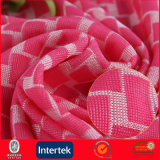 Polyamide Lycra Warp Knitting Stretch Mesh Fabric (JNE2110)