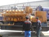 электрический генератор /Biogas /Biomass газа /Natural метана 25kVA~750kVA