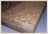panneau de particules de 4*8 6/9/12/15/18mm OSB pour les meubles/construction