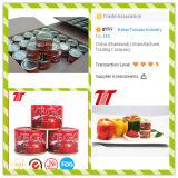 Inserimento di pomodoro concentrato doppio del raccolto della fabbrica del pomodoro del Hebei dell'inserimento di pomodoro nuovo
